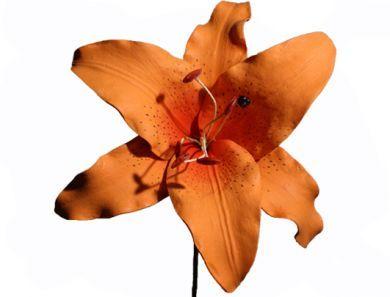 Extra Large Orange Lily Foam Flower