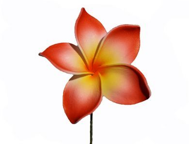 Small Plumeria Red & Yellow