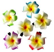 Flower Clips-small