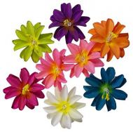 Colored Flower Clips
