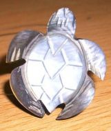 Shell Ring-Turtle