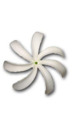 White Foam Long Petal Tiare Flower