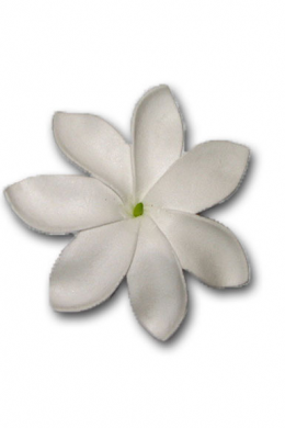 White Foam Tiare Flower-1