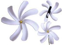 White Tiare Flower - Yellow Center